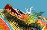 Asiatischer drache